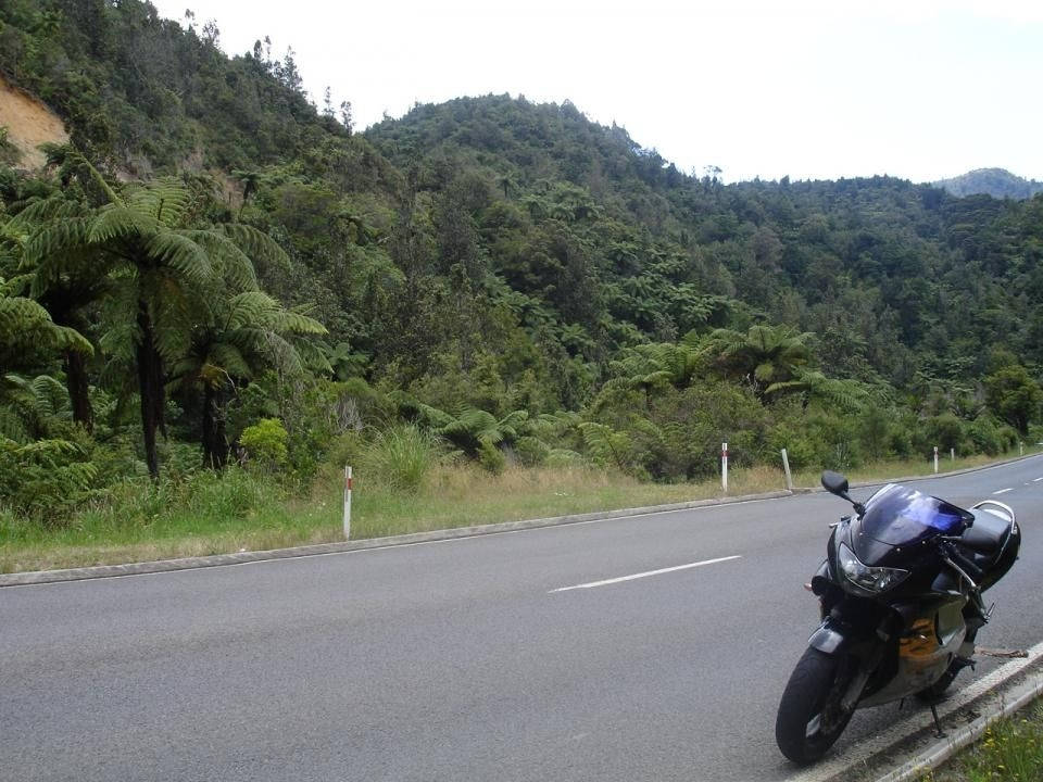 coromandel-circuit-nz_ttc-3-- Route Photo